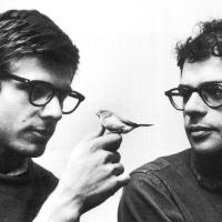 El pacífico amor intelectual - Cartas de amor entre Allen Ginsberg y Peter Orlovsky